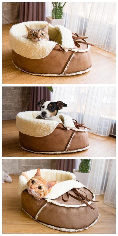Fun Shoe Cat Bed by NappingJoJo