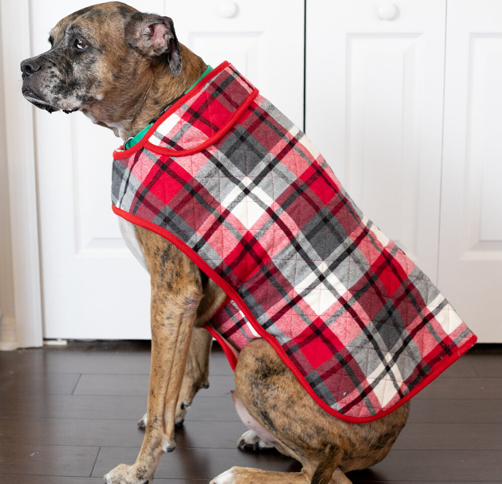 DIY Fabric Dog Coat Free Sewing Patterns + Video