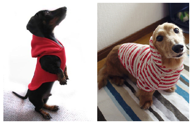 DIY Fabric Hooded Dog Coat Free Sewing Patterns