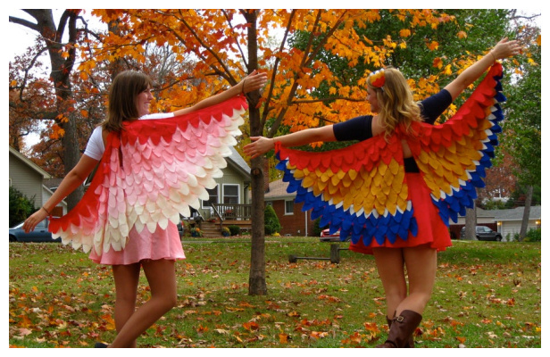 DIY Fabric Birds of Feather Costume Free Sewing Pattern